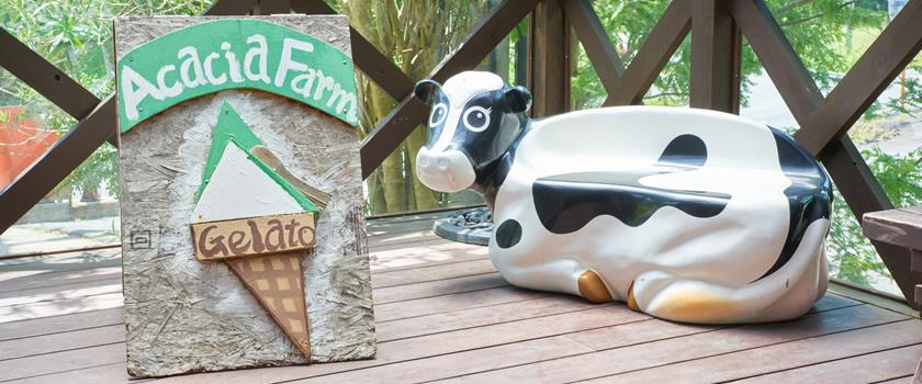 お菓子やアイスに使われる牛乳の種類は?豆乳との違いなども解説